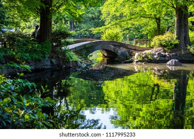 "MITAKA CITY, TOKYO / JAPAN - MAY 5 2018 : Scenery of ""gourd shaped pond"" of Inokashira Park. Green reflection of trees is a beautiful small pond."