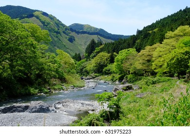 Mitake valley surrounded by fresh green, Tokyo, Japan