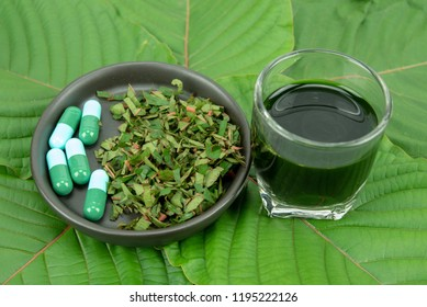 Mitragynina speciosa or Kratom leaves with powder product in white ceramic bowl and water from the extracts the kratom leaves. Supplement kratom green capsules.