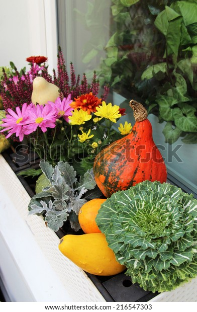 Mix of beautiful fall decorations on the terrace garden