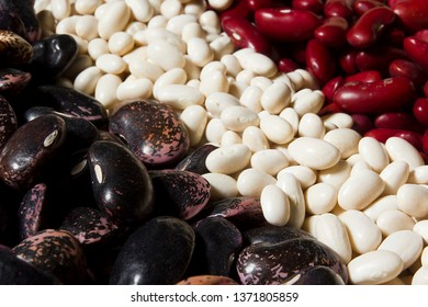 Mix of different in size and color of beans
