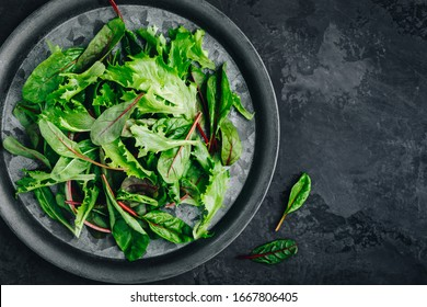 Mix fresh green leaves of lettuce for salad on a dark stone background, top view, copy space.