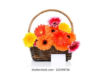 Mix gerber flowers in the basket with card isolated on white background