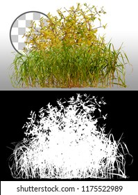 Mix of grass and wild plants isolated on a transparent background via an alpha channel of great precision. High quality mask without unwanted edge. Very high resolution for professional composition.