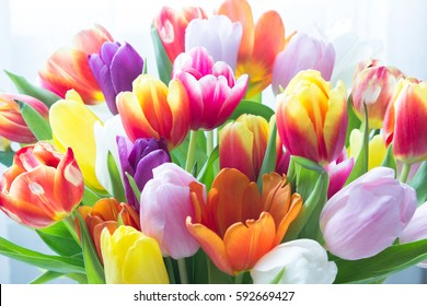Mix of tulips flowers near the window