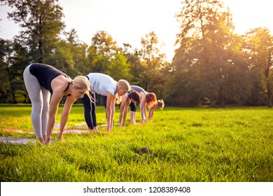 Mixed age group of people practicing yoga outside in the park while sunset
