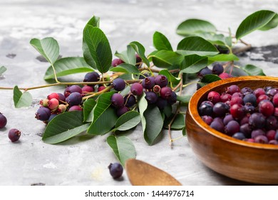 Mixed blueberry with red color