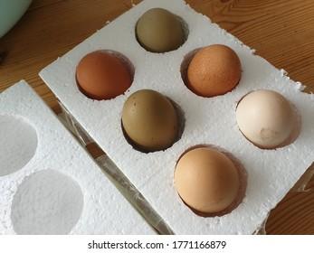 Mixed breed free range fertilised eggs