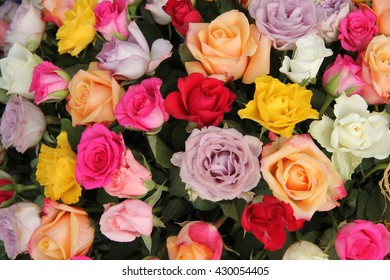 Mixed colored rose bouquet in bright colors