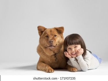 Mixed dog with cheerful child on gray background