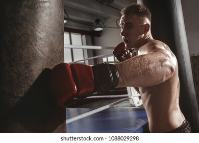 Old School Boxing Stock Photos, Images & Photography | Shutterstock