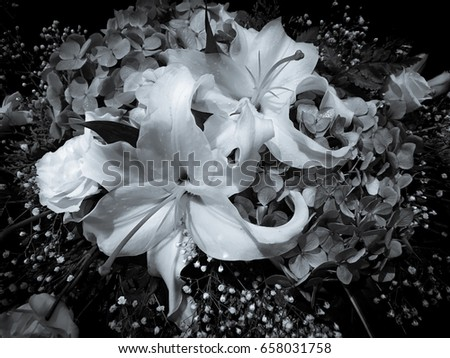 Mixed Flower Arrangement Black White Photo Stock Photo Edit Now