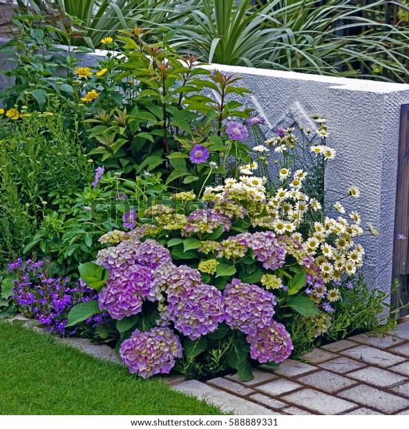 Mixed flower Border in a courtyard garden