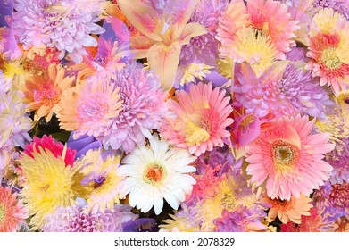 Mixed flowers in a colorful abstract design