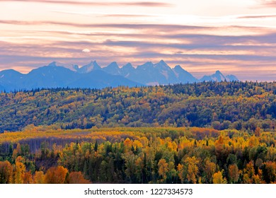 Mixed Forest in autumn colors with Seven Sister Mountain Peaks in the background on cloudy day just before sunset.