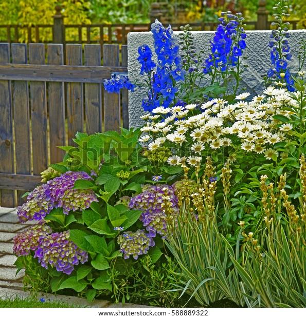 Mixed Garden Border in a courtyard garden