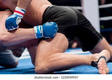 Mixed martial fighters on the ground of arena during competition. Two MMA fighters fight on floor ring