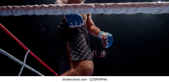 Mixed martial fighters on the ground of arena during competition.  MMA fighter fight on floor ring