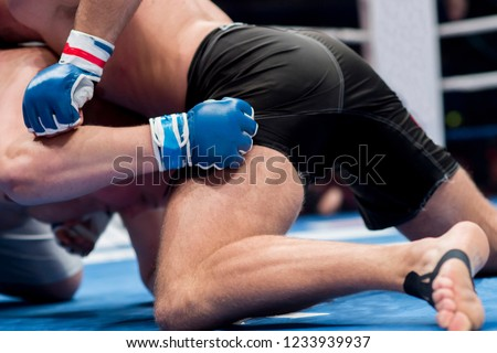 Mixed martial fighters on