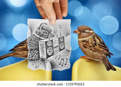 Mixed media image showing a hand-held piece of paper with a realistic pencil drawing on it depicting a bird holding an hi-fi system with music notes with another bird and bokeh in the photo background