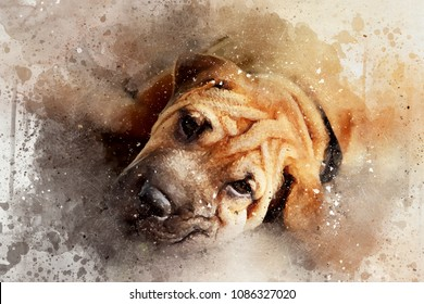 Mixed media portrait of a resting Shar pei dog. Digital watercolour portrait with paint splatters, scratches and blots.