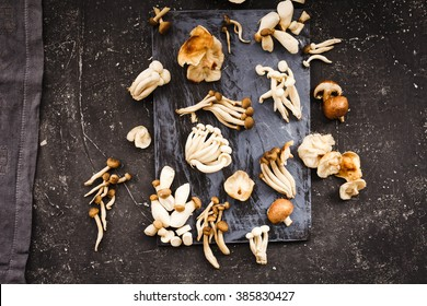 Mixed mushrooms. Shiitake, Composition of King trumpet mushroom (Eringi), Brown beech mushroom (Shimeji), Indian Oyster mushroom, Jew's ear Mushroom, Golden needle mushroom.