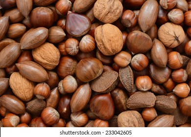 Mixed nuts - chestnuts, pecans, walnuts, brazil nuts and hazelnuts - as an abstract background texture