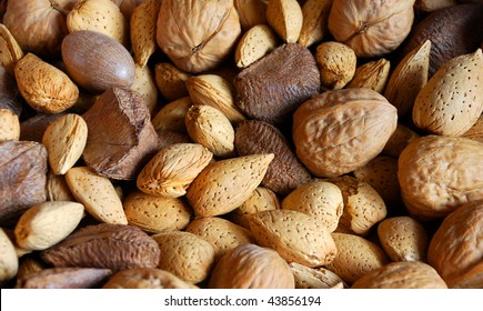 Mixed nuts in shells