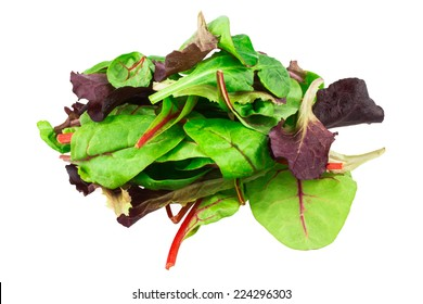 Mixed salad baby red leaf, baby spinach & red chard. isolated on white