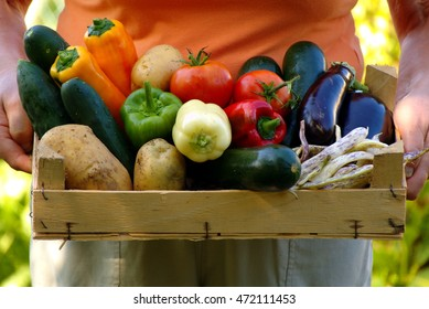Mixed vegetables in crate from permaculture garden