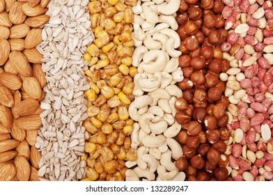 Mixture of almonds, sunflower seeds, corn, cashews, hazelnuts, peanuts  - background