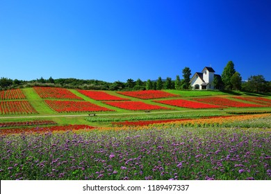 Miyagi Prefecture and about gardens