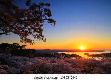 Miyagi Prefecture Matsushima in spring