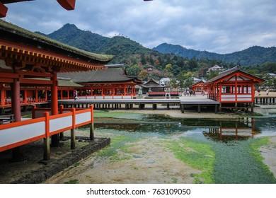 Miyajima, Hiroshima, Japan at the floating gate or The great Torii of Itsukushima Shrine.