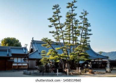 Miyajima Island, Hiroshima Bay, Japan -Itsukushima Shrine - Local Daiganji Shinto shrine at golden hour with with beautiful backlit pine trees in the foreground at Miyajima, Japan.