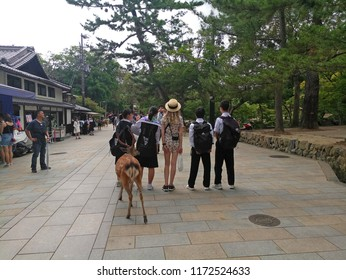 Miyajima, Japan - June 20, 2018: Tourist visit Itsukushima Shrine on Miyajima Island. Miyajima island is a famous island shrine-town is a Unesco World Heritage Site and a major tourism destination.