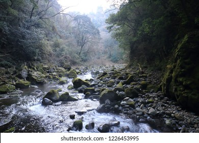 "Miyazaki Prefecture Amano Iwato shrine of the landscape of Japan. ""amano iwato jinja(zinja)"" is famous shrine in japan."