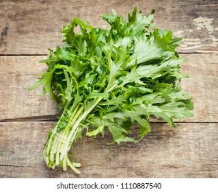 Mizuna lettuce bunch