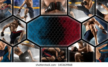 MMA collage.  Mixed martial arts fighter (MMA)