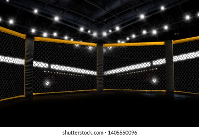 MMA fight cage arena. Octagon – Image