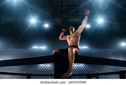 MMA fighters on ring. Fighting Championship.