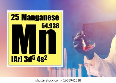 Mn. Manganese Description of the chemical properties of manganese in the cell. Cell MN from the periodic table. Lab technician experimenting in the workplace. Chemist holds a test tube with manganese