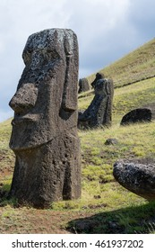 Moai at Rano Raraku, the quarry on Easter Island where the moai were carved. These moai were abandoned in transit down the crater, and never made it to any of the ahus, their intended destinations.