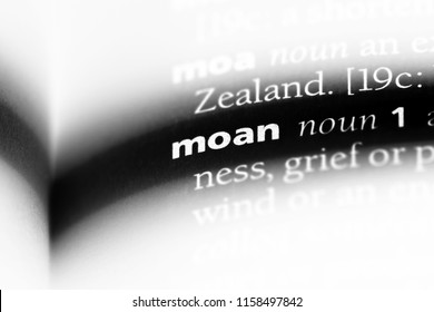 moan word in a dictionary. moan concept.