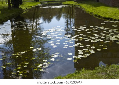 The moated castle Raesfeld (Germany, Northrhine Westphalia, County Borken) reflects in the water of the moat.