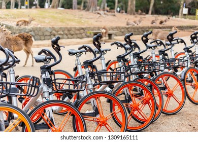 Mobike bicycles sharing service for tourist in Nara, Japan. 15 January 2019.