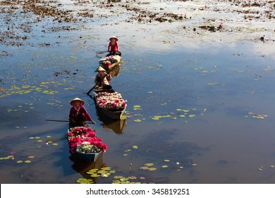 Moc Hoa District, Long An Province, Vietnam - November 22, 2015: people boating on lakes harvest water lilies, the people of this region used water lilies do as a vegetable dish