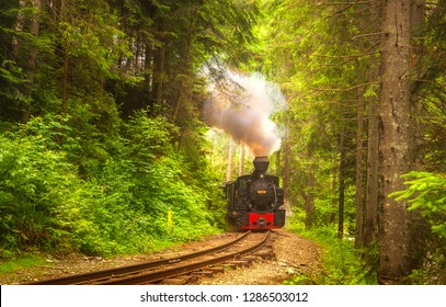 Mocanita steam train in forest from Bucovina or Maramures, Romania