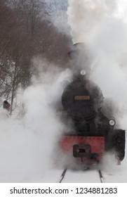 Mocanita,the steam train from Maramures, Romania