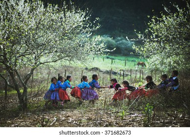 MOCCHAU, VIETNAM, JANUARY 31, 2016: H'mong ethnic children in traditional custome in H'mong holiday. H'mong is the 8th largest ethnic group in Vietnam.